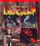 what is a lifecycle